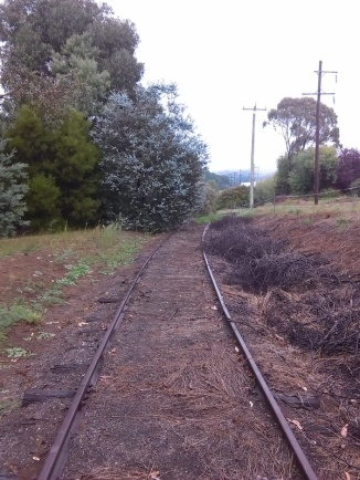 Disused railway, Batlow, towards Kunama